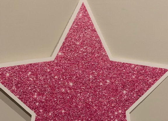 Sparkly Pink Star Icon
