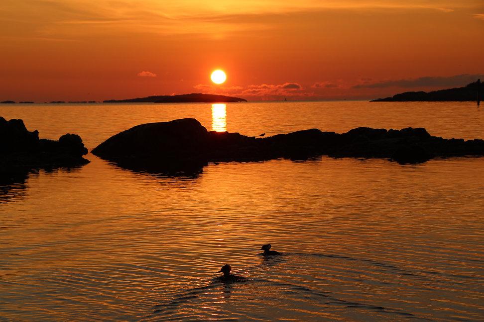 sunrise-TWTVACD.jpg