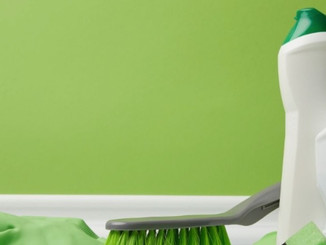 Spring Cleaning Your Business 101