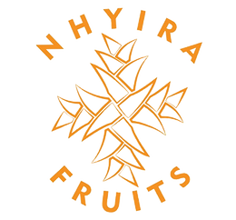 Nhyira Fruits LLC Logo