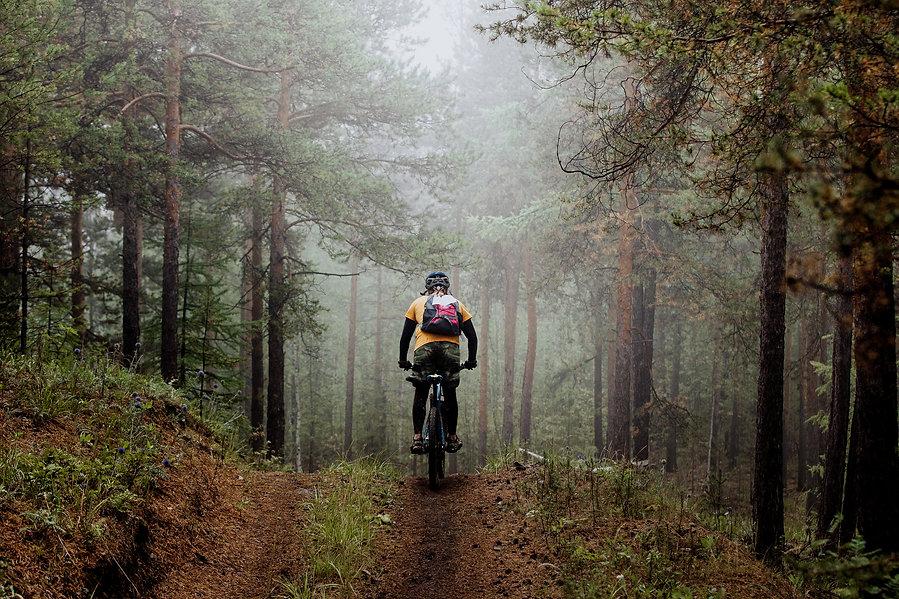 ForestBike.jpg