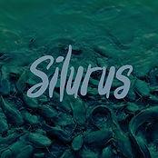 silurus.jpg