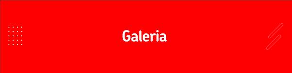 galerria2.png