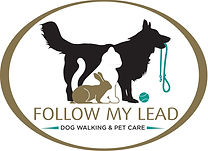 Follow My Lead logo