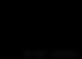 ssr-logo.png