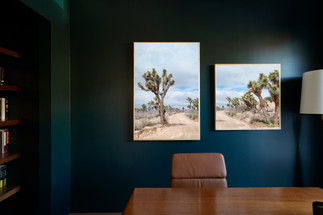 Art photography in home office