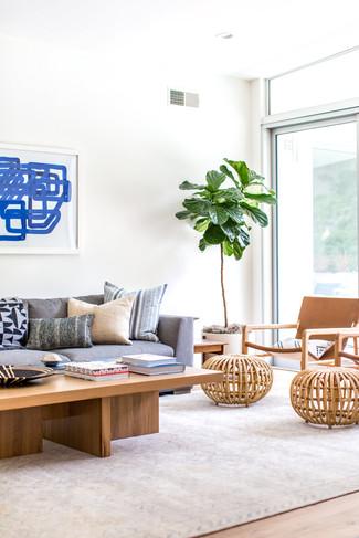 Boho modern living room