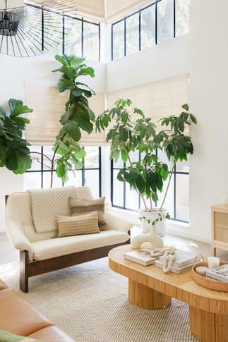Austin living room corner