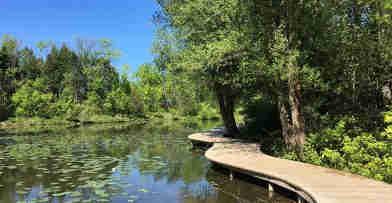 Mystery Lake is frog & turtle heaven at Schlitz Audubon Nature Center
