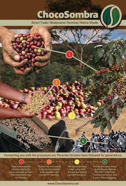 Choco Coffee Process Poster v02 small