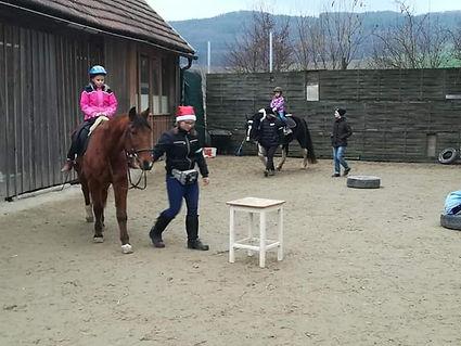 2 Pferde führen.jpg