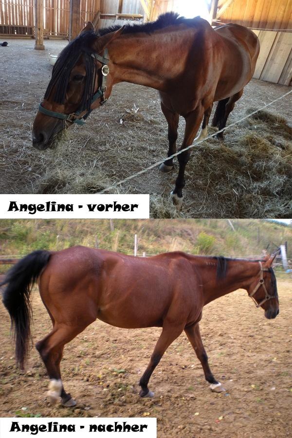 Angelina0