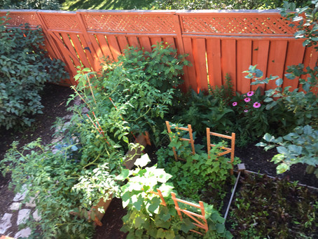 Simplicity and a Potager's Garden