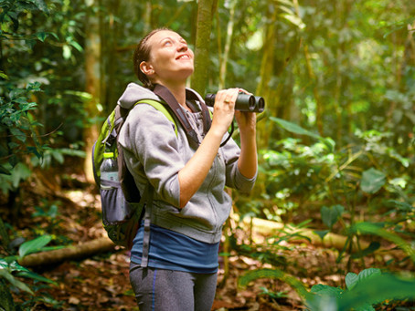 A long partnership of birdwatchers and citizen science