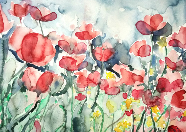 Poppy-Flowers.jpg
