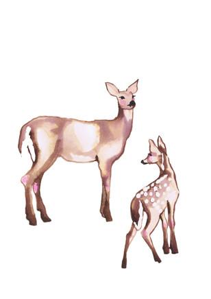 DeerMinimal1300x2000.jpg