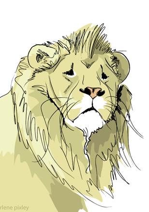 sad-lion1.jpg