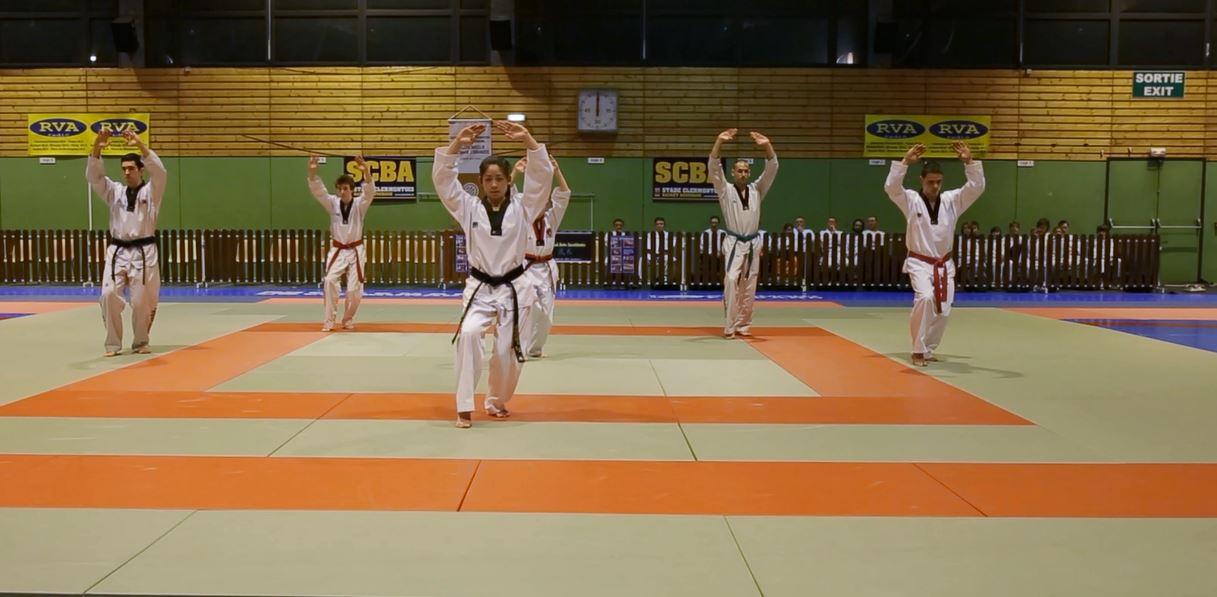 taekwondo festival.JPG