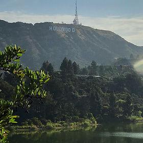HollywoodVert_edited.jpg