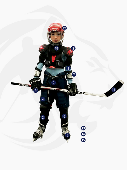 lyon-hockey-club-association équipement hockey sur glace joueur