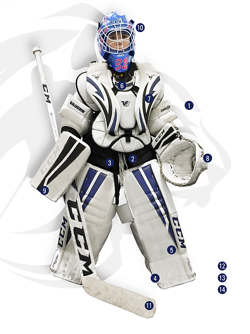 lyon-hockey-club-association équipement hockey sur glace