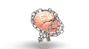 brain-3446307-1920.jpg