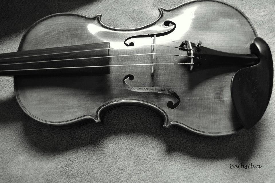 violino Bibiana T. 2013