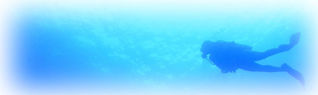 ダイビングリバティ 提供サービス