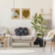Two frmes living room.jpg