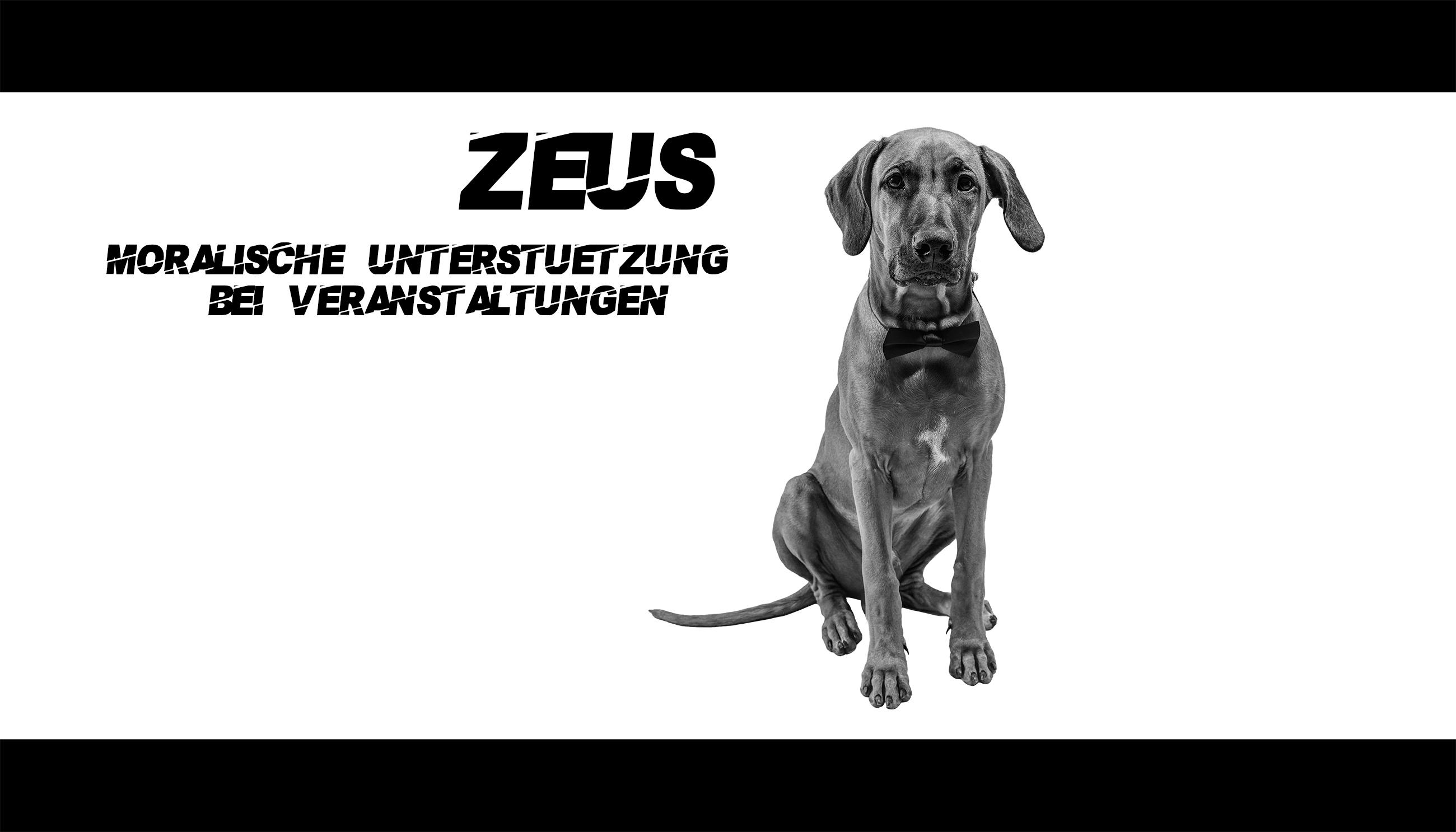 Eventmeister_Zeus_2600