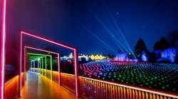 Kildare Magic Lights