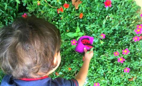 Comprender el tiempo a través del ritmo: nuestro ritmo en casa