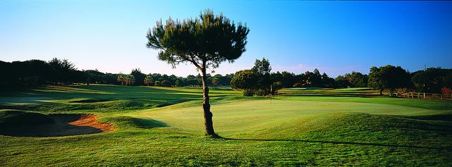 Quinta da Marinha golfbild5x