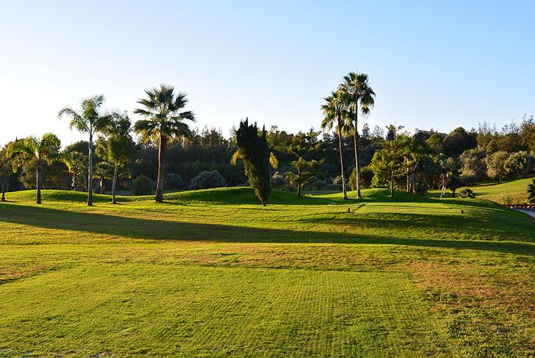 Marbella15 046