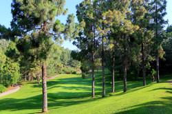 hole-8-el-chaparral-golf-club-4