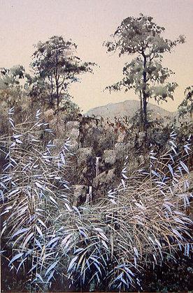 Bamboo and Waterfall