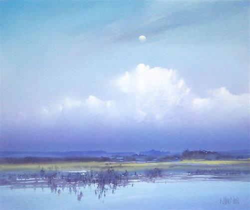 Wetlands of Wigtown