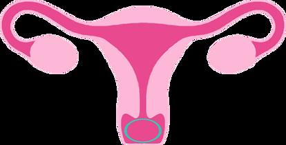p-ring-livmoder.png