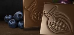 drsandy-chocolate