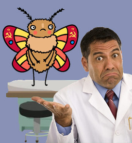 The Moth and the Podiatrist