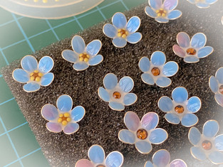 These sweet forget-me-nots are going to be in the new season collection.
