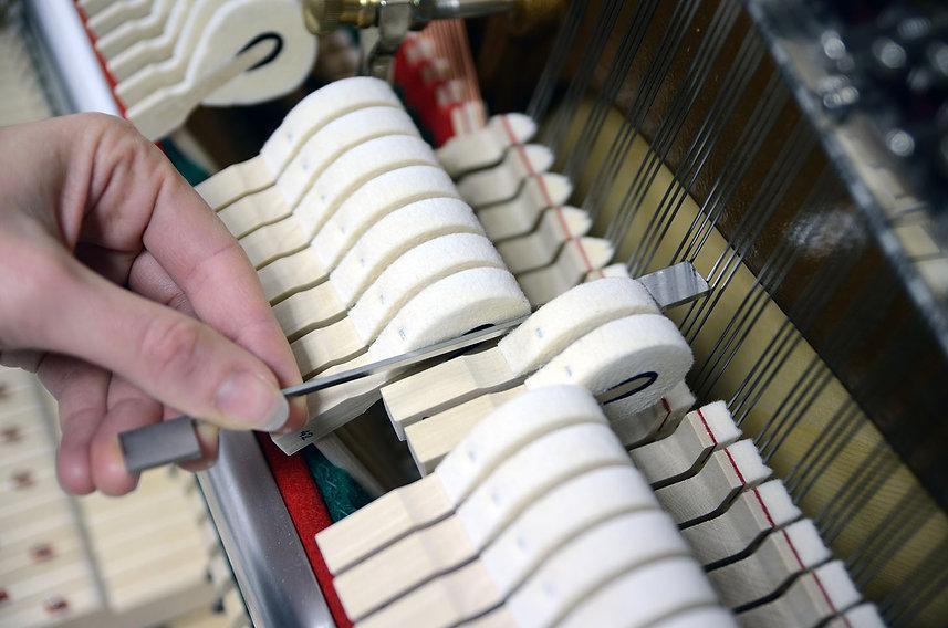 elodie galle réglage piano