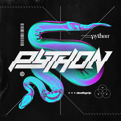 Python-2-web.jpg