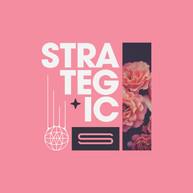 Strategic-Apparel-Designs-14-web.jpg