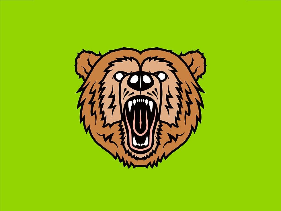BOSS BEAR DENT REPAIR