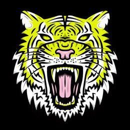 Tiger-Face-3-01-web.jpg