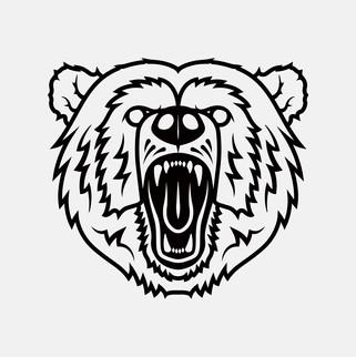 boss-bear-dent-repair-final-03-webjpg