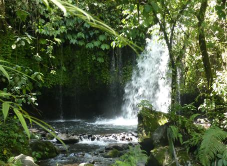 Bali en image