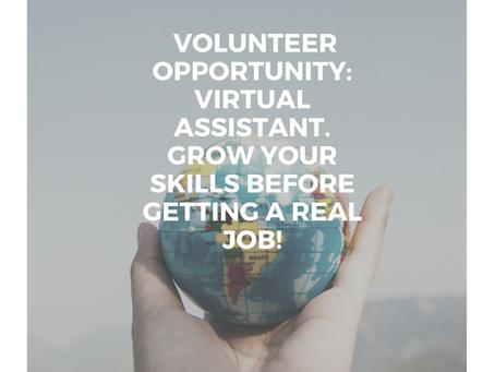 Volunteer Opportunity: Virtual Assistant