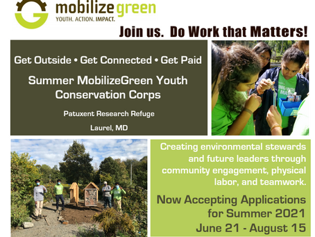 Paid 8-Weeks Summer Services For Youths: High School Kids, at least 15 Years Old !